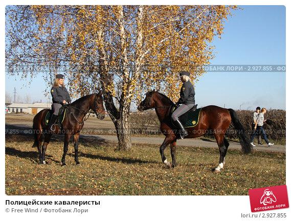 Купить «Полицейские кавалеристы», эксклюзивное фото № 2927855, снято 14 октября 2011 г. (c) Free Wind / Фотобанк Лори