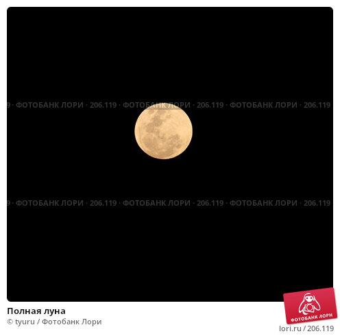 Купить «Полная луна», фото № 206119, снято 21 февраля 2008 г. (c) tyuru / Фотобанк Лори