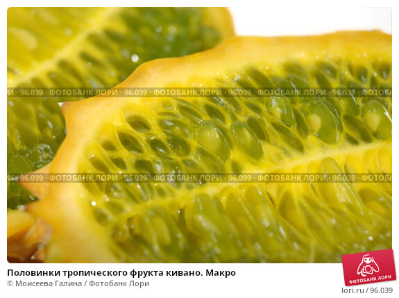 Купить «Половинки тропического фрукта кивано. Макро», фото № 96039, снято 23 сентября 2007 г. (c) Моисеева Галина / Фотобанк Лори