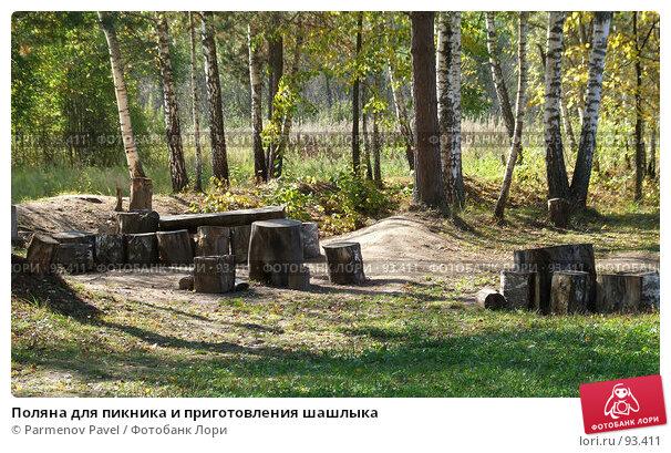 Поляна для пикника и приготовления шашлыка, фото № 93411, снято 19 сентября 2007 г. (c) Parmenov Pavel / Фотобанк Лори