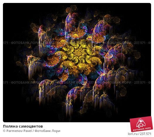 Поляна самоцветов, иллюстрация № 237571 (c) Parmenov Pavel / Фотобанк Лори