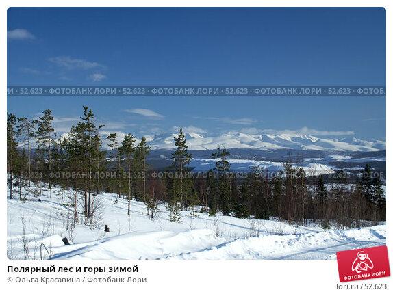 Полярный лес и горы зимой, фото № 52623, снято 21 марта 2007 г. (c) Ольга Красавина / Фотобанк Лори