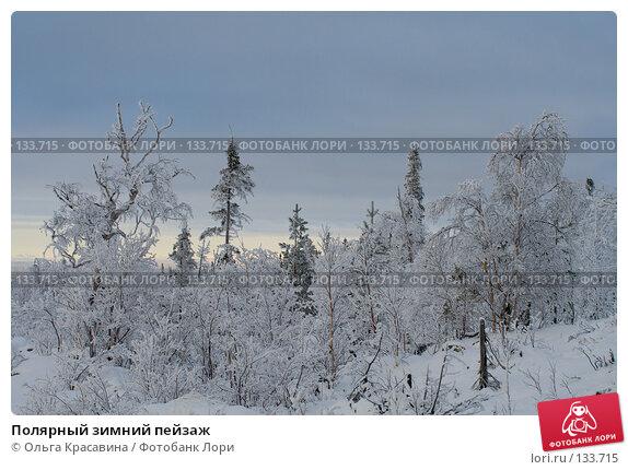 Полярный зимний пейзаж, фото № 133715, снято 3 ноября 2006 г. (c) Ольга Красавина / Фотобанк Лори
