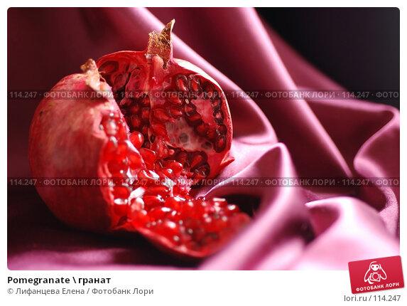 Pomegranate \ гранат, фото № 114247, снято 5 ноября 2007 г. (c) Лифанцева Елена / Фотобанк Лори
