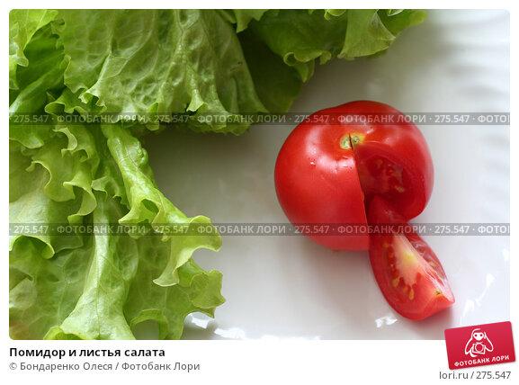 Купить «Помидор и листья салата», фото № 275547, снято 7 мая 2008 г. (c) Бондаренко Олеся / Фотобанк Лори
