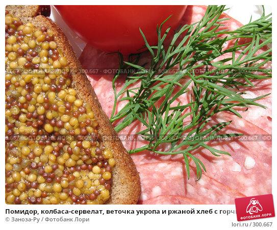 Помидор, колбаса-сервелат, веточка укропа и ржаной хлеб с горчицей, фото № 300667, снято 24 мая 2008 г. (c) Заноза-Ру / Фотобанк Лори