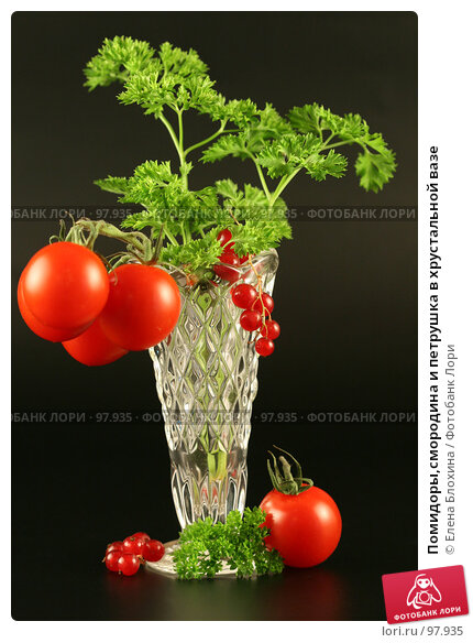 Помидоры,смородина и петрушка в хрустальной вазе, фото № 97935, снято 26 июля 2007 г. (c) Елена Блохина / Фотобанк Лори