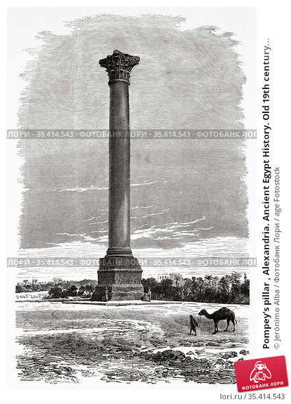 Pompey's pillar , Alexandria. Ancient Egypt History. Old 19th century... Редакционное фото, фотограф Jerónimo Alba / age Fotostock / Фотобанк Лори