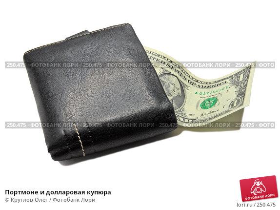 Портмоне и долларовая купюра, фото № 250475, снято 26 мая 2017 г. (c) Круглов Олег / Фотобанк Лори