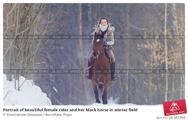 Купить «Portrait of beautiful female rider and her black horse in winter field», фото № 28307759, снято 20 апреля 2018 г. (c) Константин Шишкин / Фотобанк Лори