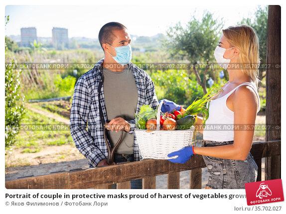 Portrait of couple in protective masks proud of harvest of vegetables grown at garden. Стоковое фото, фотограф Яков Филимонов / Фотобанк Лори
