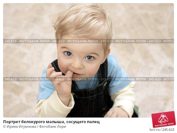 Портрет белокурого малыша, сосущего палец, фото № 245623, снято 15 марта 2008 г. (c) Ирина Игумнова / Фотобанк Лори