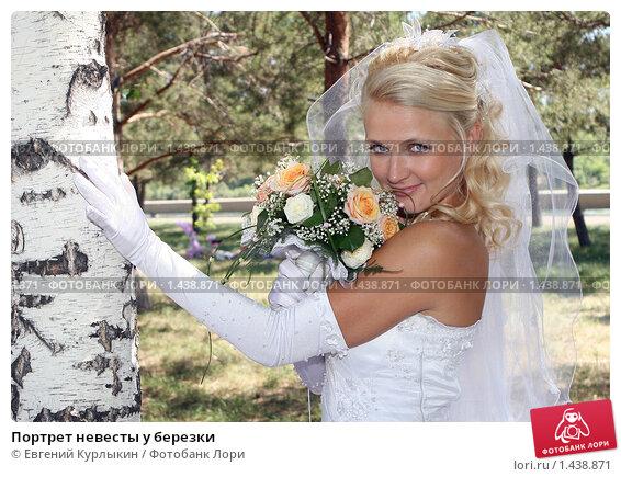 Портрет невесты у березки. Стоковое фото, фотограф Евгений Курлыкин / Фотобанк Лори