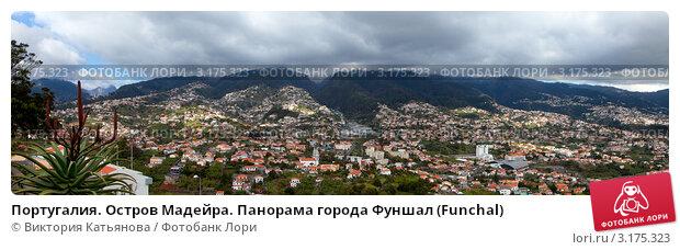Купить «Португалия. Остров Мадейра. Панорама города Фуншал (Funchal)», фото № 3175323, снято 22 декабря 2011 г. (c) Виктория Катьянова / Фотобанк Лори