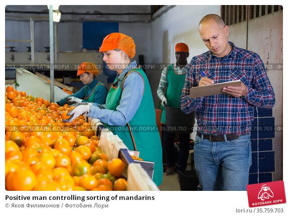Positive man controlling sorting of mandarins. Стоковое фото, фотограф Яков Филимонов / Фотобанк Лори