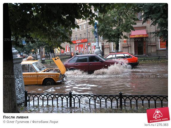 Купить «После ливня», фото № 270383, снято 14 июля 2006 г. (c) Олег Гуличев / Фотобанк Лори