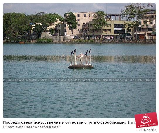 Посреди озера искусственный островок с пятью столбиками.  На среднем столбике сидит пеликан. На столбиках вокруг него сидят вороны., фото № 3447, снято 9 мая 2005 г. (c) Олег Хмельниц / Фотобанк Лори