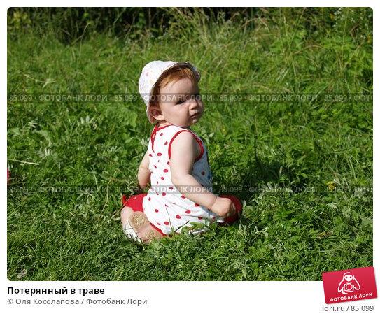 Потерянный в траве, фото № 85099, снято 16 июля 2007 г. (c) Оля Косолапова / Фотобанк Лори