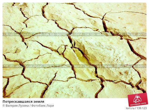 Потрескавшаяся земля, фото № 139123, снято 13 июля 2007 г. (c) Валерия Потапова / Фотобанк Лори