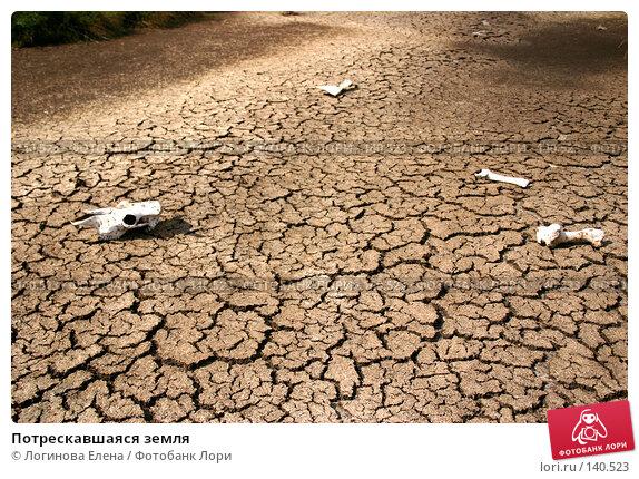 Потрескавшаяся земля, фото № 140523, снято 23 августа 2005 г. (c) Логинова Елена / Фотобанк Лори