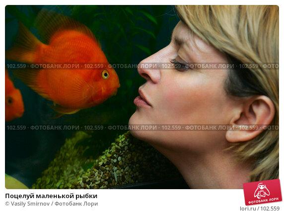 Поцелуй маленькой рыбки, фото № 102559, снято 24 октября 2016 г. (c) Vasily Smirnov / Фотобанк Лори
