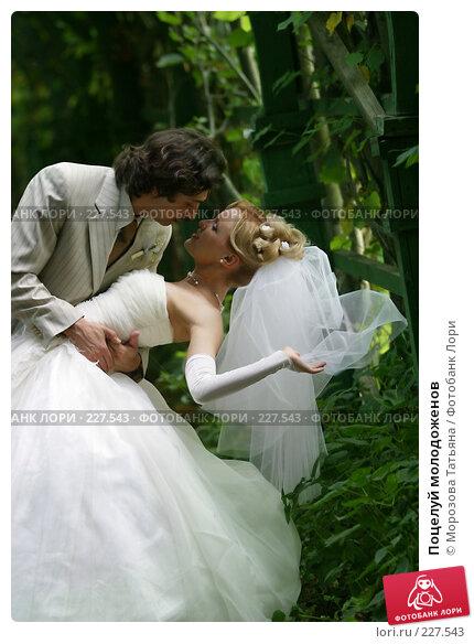 Поцелуй молодоженов, фото № 227543, снято 27 августа 2005 г. (c) Морозова Татьяна / Фотобанк Лори