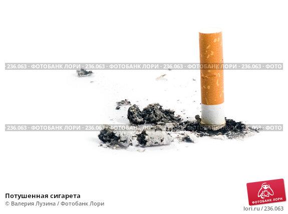 Купить «Потушенная сигарета», фото № 236063, снято 24 марта 2008 г. (c) Валерия Потапова / Фотобанк Лори