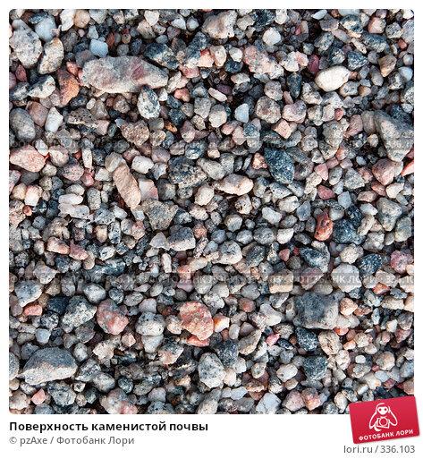 Купить «Поверхность каменистой почвы», фото № 336103, снято 3 июня 2007 г. (c) pzAxe / Фотобанк Лори
