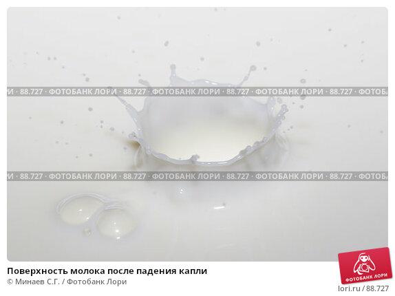 Купить «Поверхность молока после падения капли», фото № 88727, снято 25 сентября 2006 г. (c) Минаев С.Г. / Фотобанк Лори