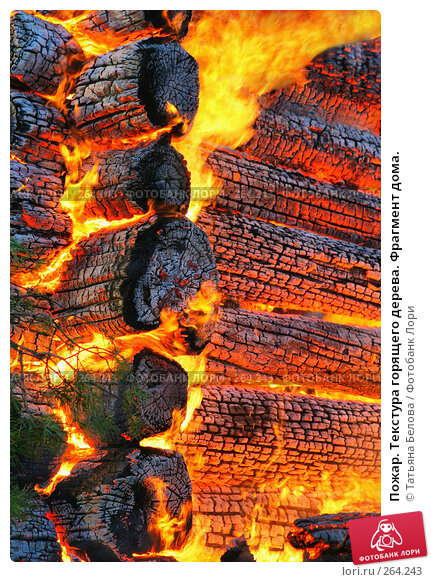 Пожар. Текстура горящего дерева. Фрагмент дома., фото № 264243, снято 1 ноября 2007 г. (c) Татьяна Белова / Фотобанк Лори