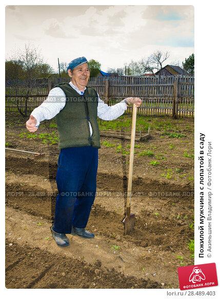 Купить «Пожилой мужчина с лопатой в саду», фото № 28489403, снято 1 мая 2010 г. (c) Акиньшин Владимир / Фотобанк Лори