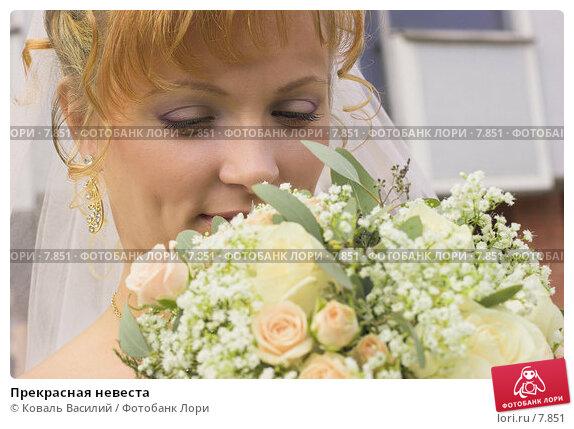 Купить «Прекрасная невеста», фото № 7851, снято 21 апреля 2018 г. (c) Коваль Василий / Фотобанк Лори