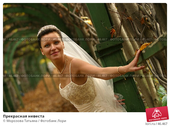 Прекрасная невеста, фото № 46467, снято 30 сентября 2006 г. (c) Морозова Татьяна / Фотобанк Лори