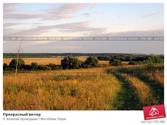 Прекрасный вечер, фото № 175199, снято 4 августа 2007 г. (c) Алексей Хромушин / Фотобанк Лори