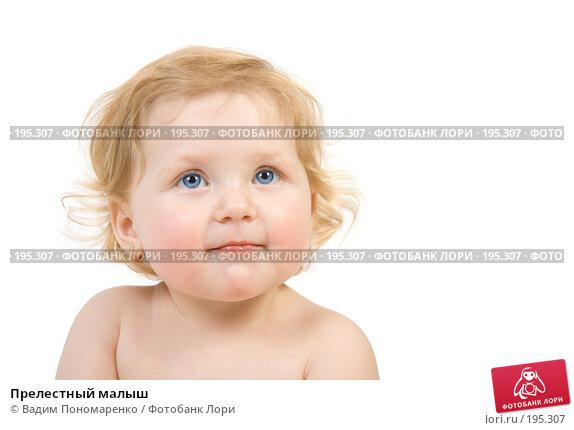 Прелестный малыш, фото № 195307, снято 19 января 2008 г. (c) Вадим Пономаренко / Фотобанк Лори