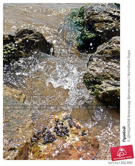 Прибой, фото № 202895, снято 11 августа 2007 г. (c) ДЕНЩИКОВ Александр Витальевич / Фотобанк Лори