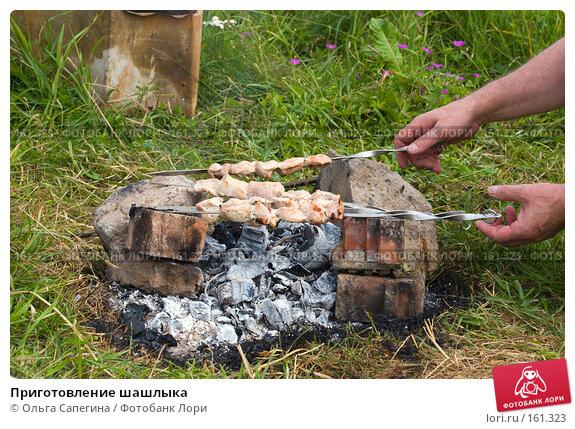 Приготовление шашлыка, фото № 161323, снято 11 июля 2007 г. (c) Ольга Сапегина / Фотобанк Лори