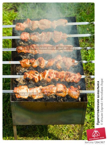 Купить «Приготовление шашлыка», фото № 264967, снято 1 июля 2007 г. (c) Ильин Сергей / Фотобанк Лори