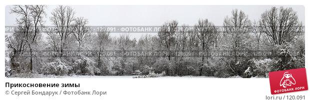 Прикосновение зимы, фото № 120091, снято 23 мая 2017 г. (c) Сергей Бондарук / Фотобанк Лори