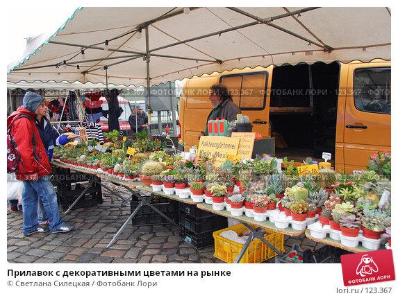Прилавок с декоративными цветами на рынке, фото № 123367, снято 1 октября 2007 г. (c) Светлана Силецкая / Фотобанк Лори
