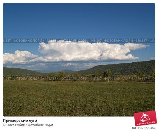 Приморские луга, фото № 148387, снято 1 сентября 2007 г. (c) Олег Рубик / Фотобанк Лори