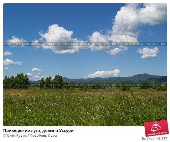 Приморские луга, долина Уссури, фото № 143187, снято 22 июля 2007 г. (c) Олег Рубик / Фотобанк Лори