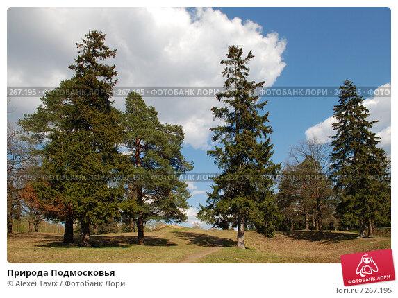 Природа Подмосковья, эксклюзивное фото № 267195, снято 27 апреля 2008 г. (c) Alexei Tavix / Фотобанк Лори