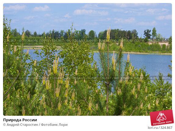 Купить «Природа России», фото № 324867, снято 18 мая 2008 г. (c) Андрей Старостин / Фотобанк Лори