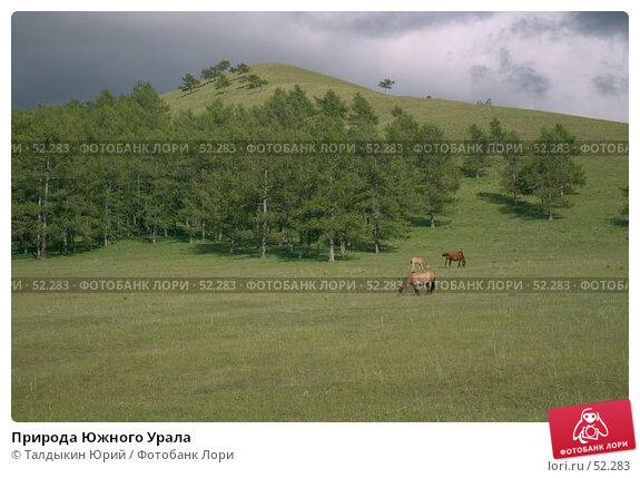 Природа Южного Урала, фото № 52283, снято 23 октября 2016 г. (c) Талдыкин Юрий / Фотобанк Лори