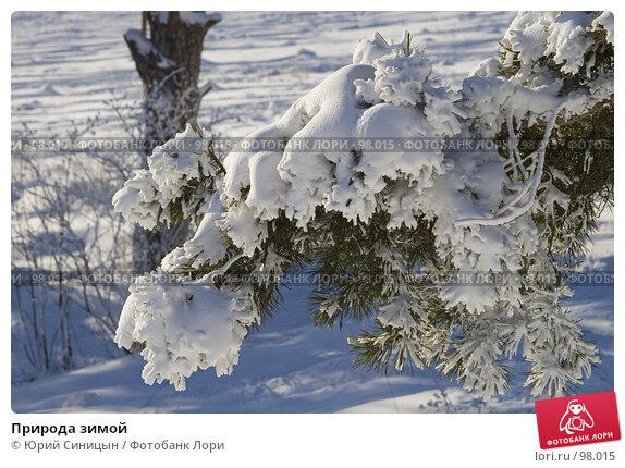 Природа зимой, фото № 98015, снято 12 февраля 2007 г. (c) Юрий Синицын / Фотобанк Лори
