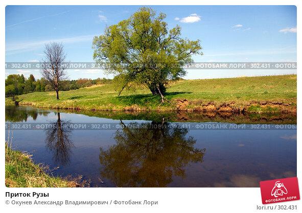 Приток Рузы, фото № 302431, снято 10 мая 2008 г. (c) Окунев Александр Владимирович / Фотобанк Лори
