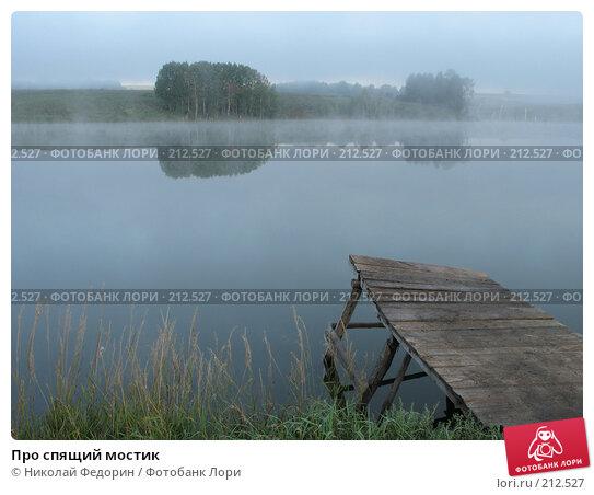 Про спящий мостик, фото № 212527, снято 13 августа 2006 г. (c) Николай Федорин / Фотобанк Лори