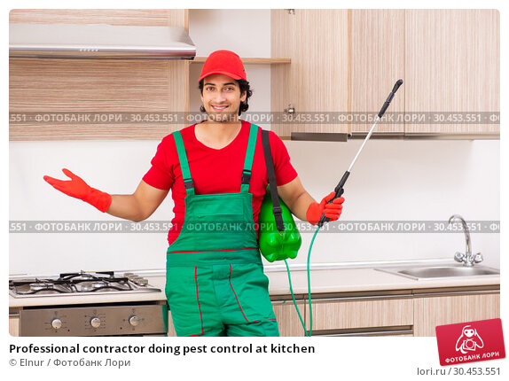 Professional contractor doing pest control at kitchen. Стоковое фото, фотограф Elnur / Фотобанк Лори