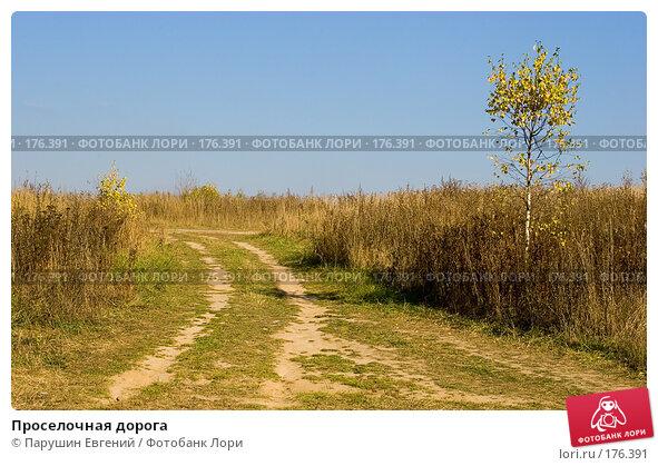 Проселочная дорога, фото № 176391, снято 28 июля 2017 г. (c) Парушин Евгений / Фотобанк Лори